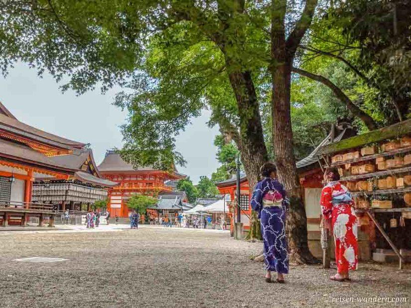 Frauen im Kimono beim Yasaka Schrein
