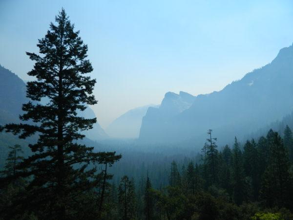 Der Tunnel View mit den Granitfelsen im Hintergrund und dem Nadelwald des Yosemite Nationalpark im Vordergrund