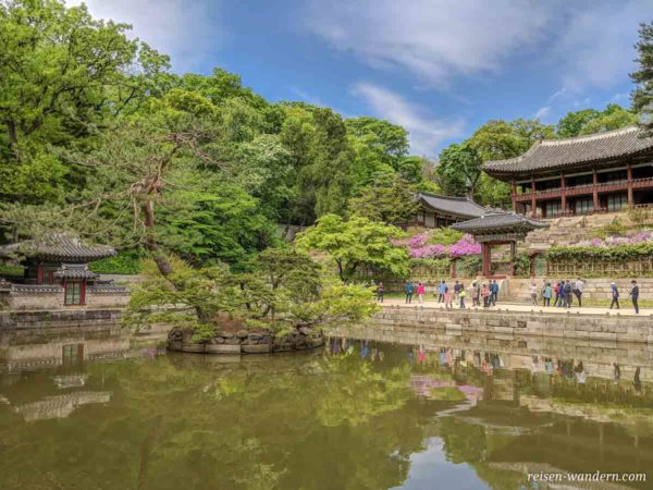 Secret Garden beim Changdeokgung Palace in Seoul