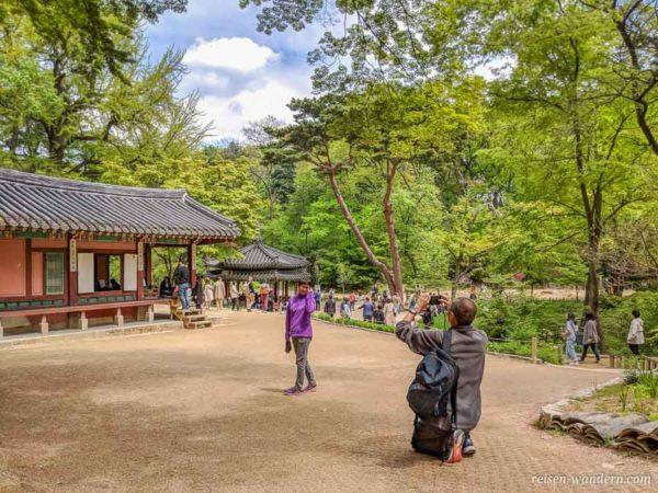 Pavillons im Secret Garden des Changdeok Palast