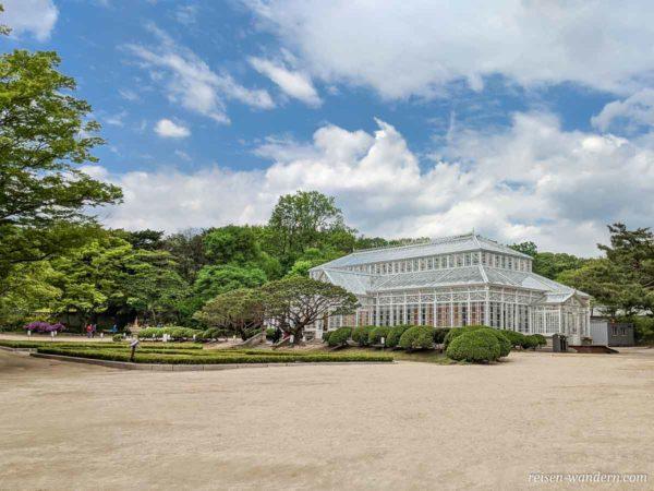 Gewächshaus im Changgyeonggung