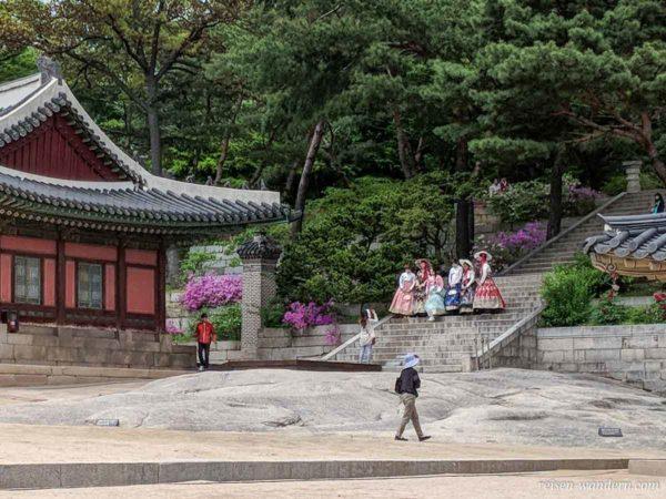 Verkleidete Touristen beim Fotosession im Changgyeong Palast
