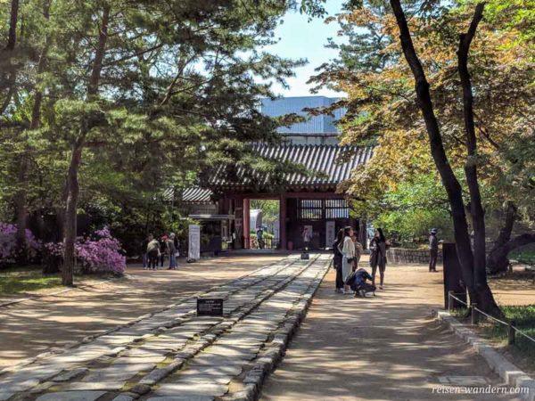 Eingang zum Jongmyo Schrein