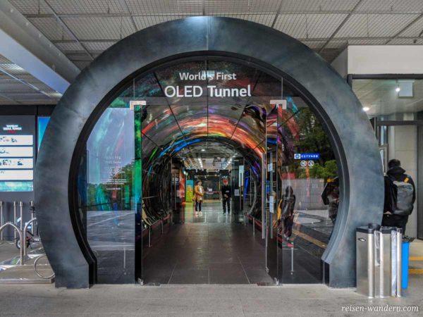 LG OLED Tunnel am Fuß des N-Seoul Towers