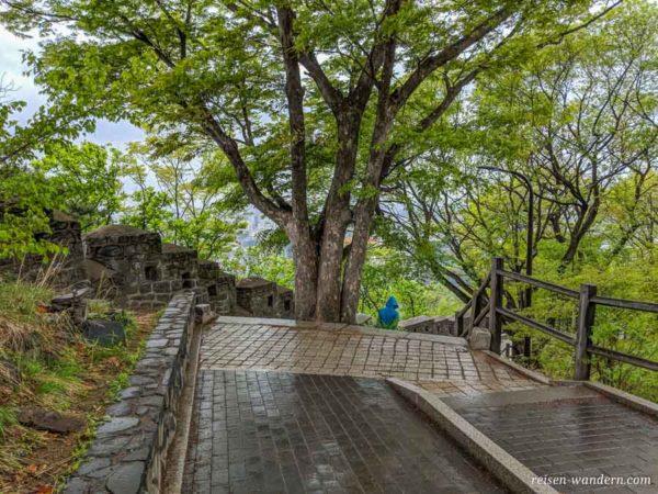 Stadtmauer mit Treppe im Namsan Park