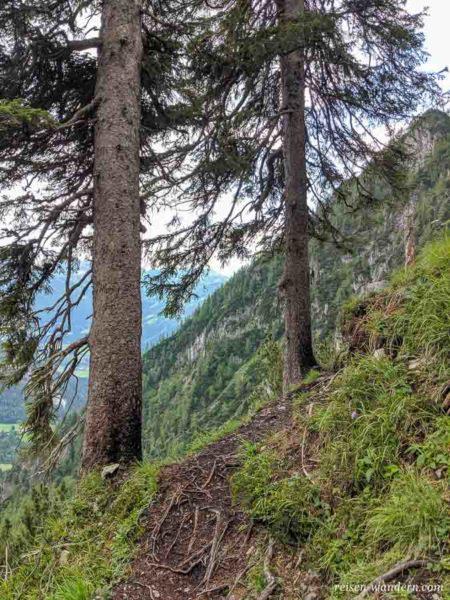 Bäume mit Gipfelbuch vom Siega Klettersteig