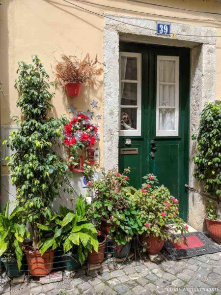 Mit Blumen geschmückte Tür in Lissabon