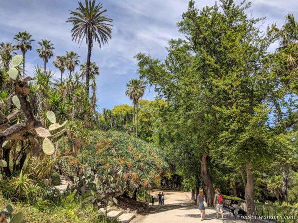 Botanischer Garten Botanical Garden of Lisbon