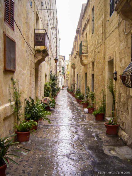 Gasse in Rabat nach Regenschauer
