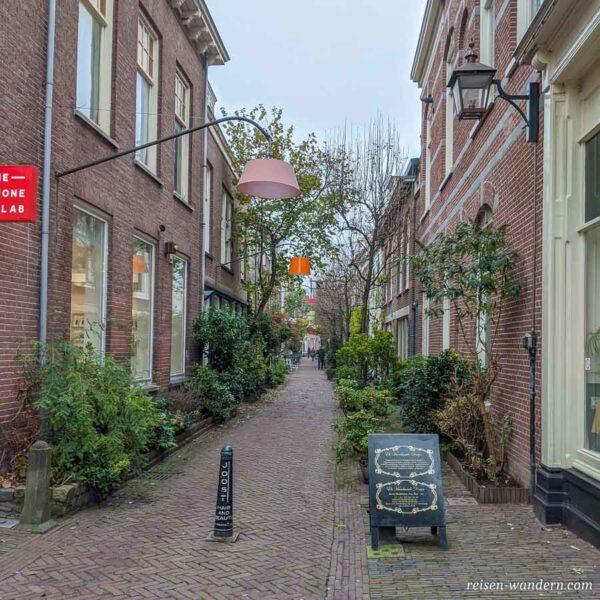 Kleine Gasse mit Grün in Haarlem