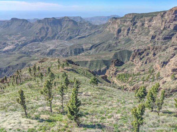 Blick in das Naturschutzgebiet von Gran Canaria