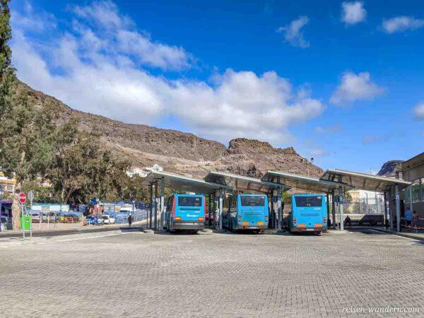 Busse am Busbahnhof von Puerto de Mogan