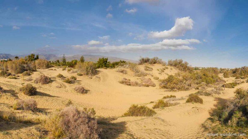 Panorama der Dünen von Maspalomas