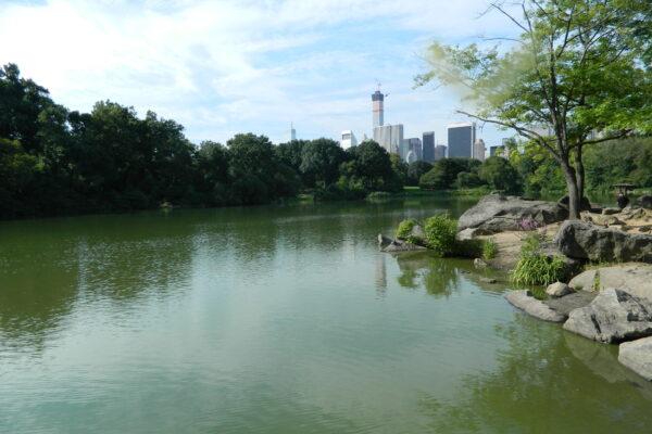 Ein See des Central Parks und die Skyline New Yorks im Hintergrund