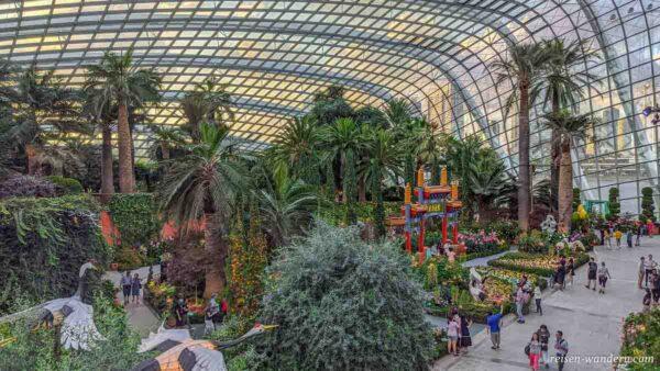 Innenansicht des Flower Dome mit Palmen