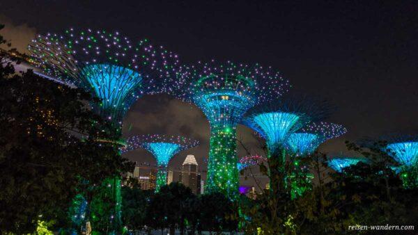 Blau beleuchtete Supertree im Dunkeln