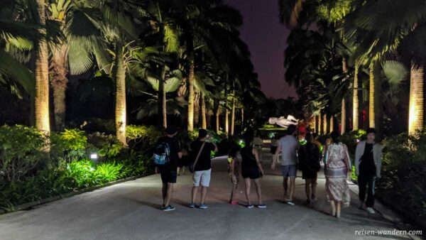 Beleuchtete Allee im Gardens by the Bay mit Palmen
