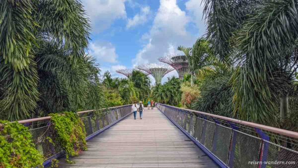 Dragonfly Bridge beim Gardens by the Bay