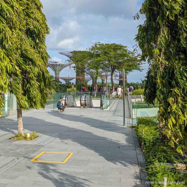 Hochweg zum Gardens by the Bay mit Supertrees