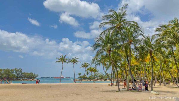 Strand mit Palmen am Siloso Beach in Singapur