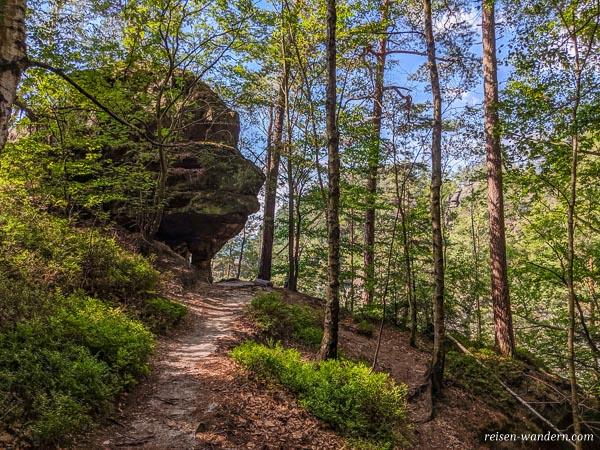 Bergpfad am Ausstieg der Stiege