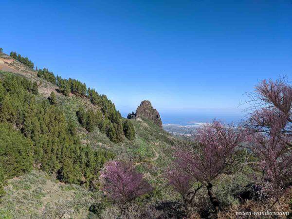 Aussicht von der Caldera de Los Marteles