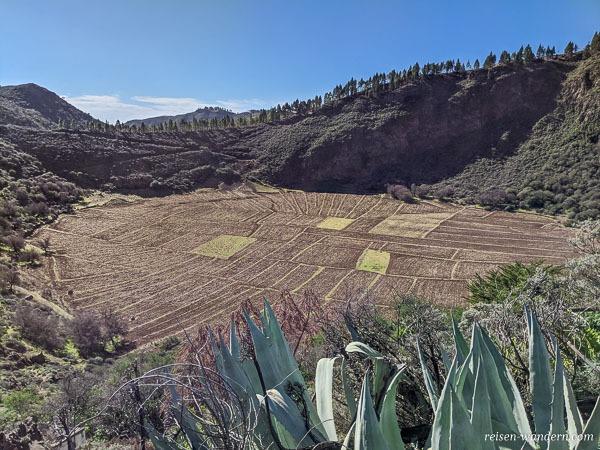 Caldera de Los Marteles auf Gran Canaria
