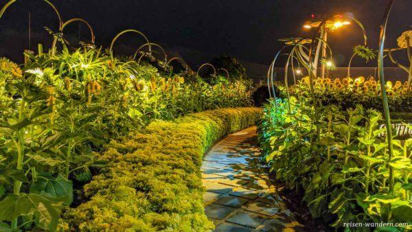 Sunflower Garden im Flughafen Singapur