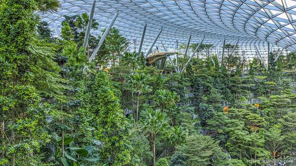 Blick auf den Shiseido Forest Valley im Jewel Changi Airport