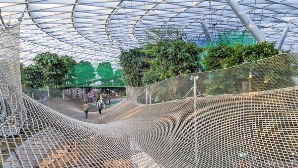 Attraktion Manulife Sky Nets – Walking im Canopy Park