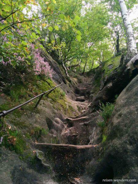 Rotkehlchenstiege im Elbsandsteingebirge