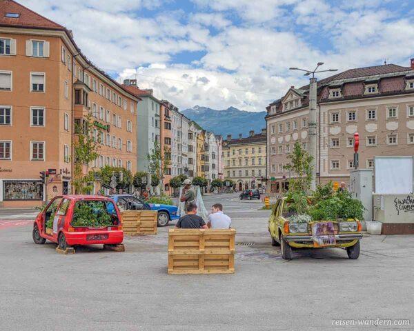 Ausgeschlachtete Autos mit Pflanzen