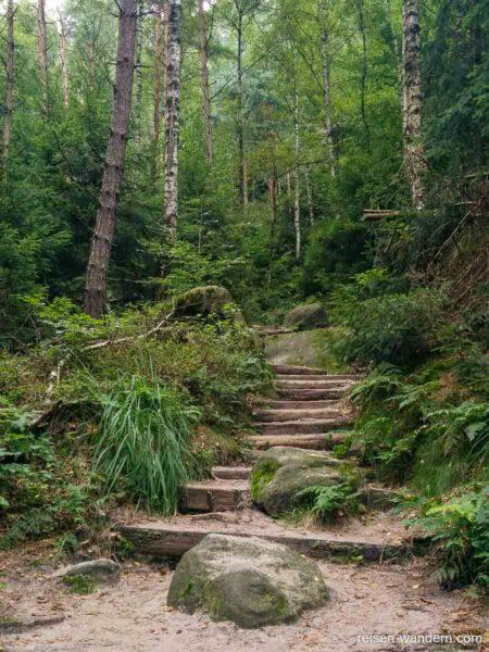 Erste Stufen im Zustieg zur Rotkehlchenstiege