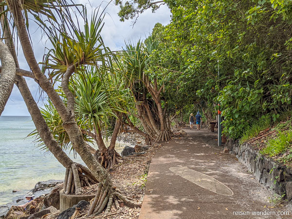 Uferpromenade in Noosa Heads zum Noosa-Nationalpark