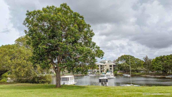 Appartments an der Sunshine Coast in Noosa Heads