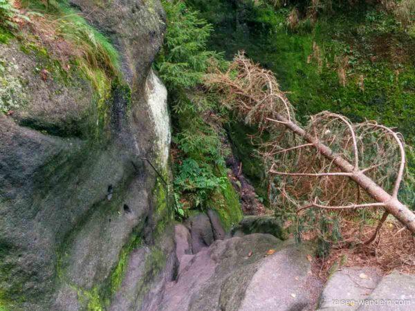 Eisenkrampen an Felswand in der Wilden Hölle