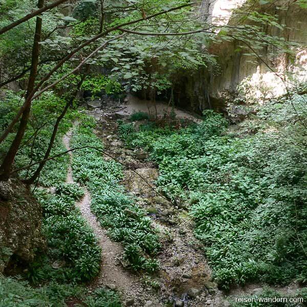 Grünes Becken des Rio Sallagoni