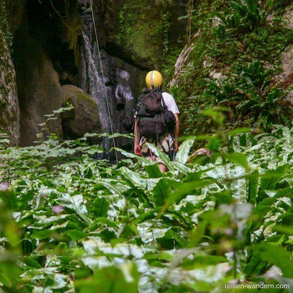 Im grünen Becken des Via ferrata Rio Sallagoni