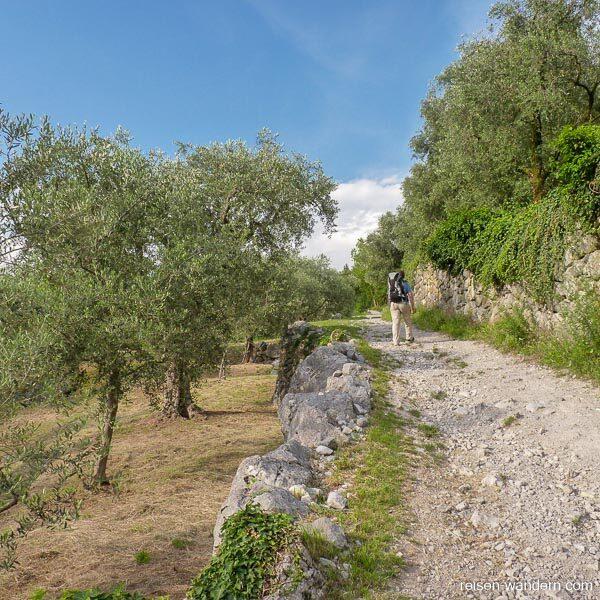 Weg zum Klettersteig Rio Sallagoni