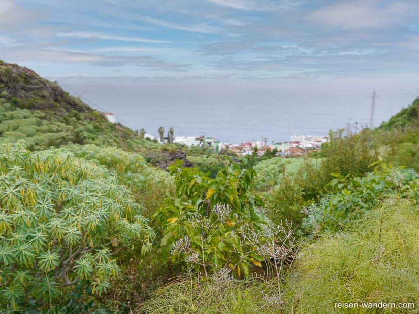 Pfad im Barranco auf Teneriffa