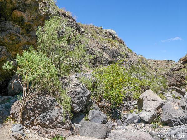 Felsen im Barranco del Rey