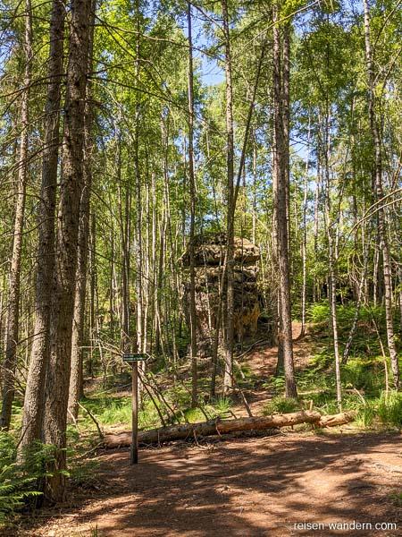Waldweg mit Wegweisern auf der Oberen Affensteinpromenade