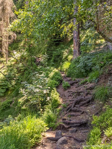 Bergpfad der Oberen Affensteinpromenade im 2. Abschnitt