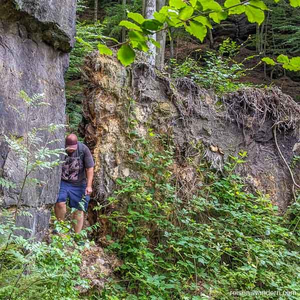 Einstieg Bergpfad am Wurzelweg