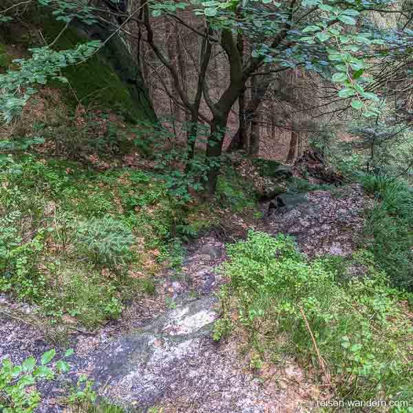 """Abstiegsweg auf dem """"Unterer Terrassenweg"""""""