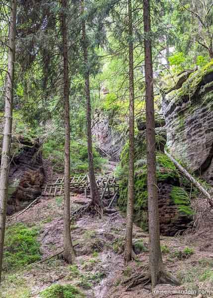 Mit Holzbalken gesperrter Abschnitt auf Pfad
